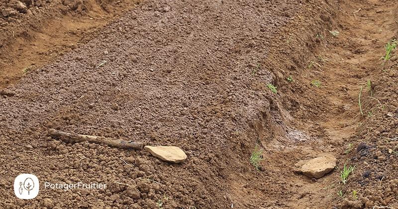 Préparation du sol pour la culture de l'ail