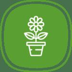 Icone d'un pot avec une fleur